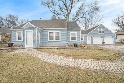 Algonac  Single Family Home For Sale: 6423 Dyke