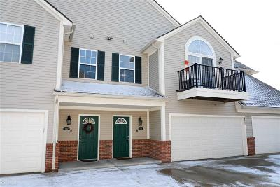 Shelby Twp Condo/Townhouse For Sale: 7783 Ambassador Dr