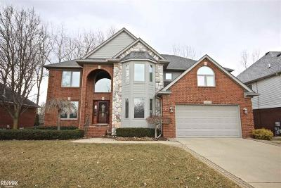 Macomb Single Family Home For Sale: 39095 Devonshire Ct