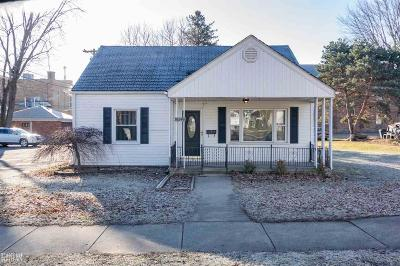 Macomb Single Family Home For Sale: 36240 Alfred