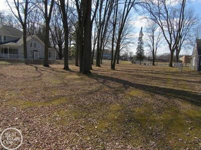Mount Clemens Residential Lots & Land For Sale: Townhall