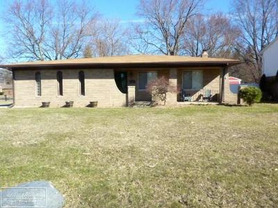 Clinton Township Single Family Home For Sale: 23411 Myrtle St