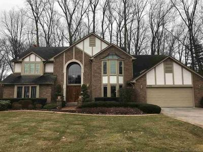 Clinton Township Single Family Home For Sale: 37208 Woodpointe Dr