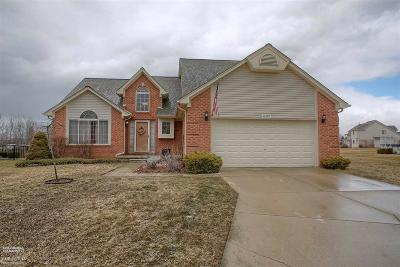 Macomb Single Family Home For Sale: 50595 Plaza Dr