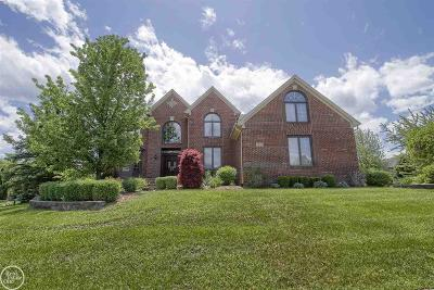 Shelby Twp Single Family Home For Sale: 2432 Hawthorne Drive North