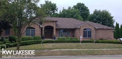 Clinton Township Single Family Home For Sale: 18500 Tara Dr