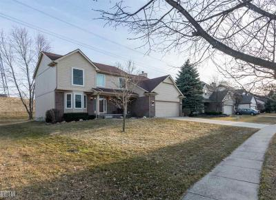 Independence Twp Single Family Home For Sale: 6458 Ancroft