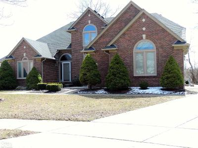 Sterling Heights Single Family Home For Sale: 3824 Lone Pine