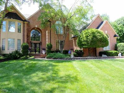 Sterling Heights Single Family Home For Sale: 2732 Arrowwood