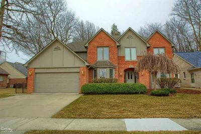 Macomb Single Family Home For Sale: 19736 Amira