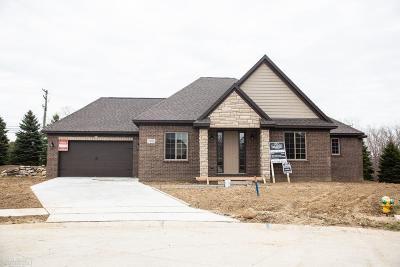 Washington Single Family Home For Sale: 7982 Firestone Ln