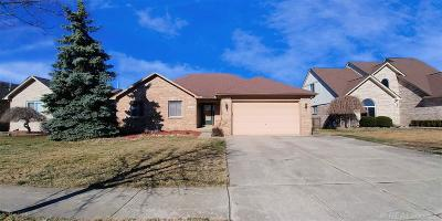 Chesterfield  Single Family Home For Sale: 49541 Maurice Dr