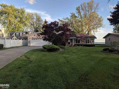 Chesterfield Twp Single Family Home For Sale: 48810 Point Lakeview St