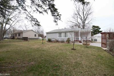 St. Clair Single Family Home For Sale: 4080 Velma Drive