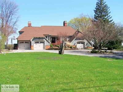 St. Clair Single Family Home For Sale: 4441 Clark Drive