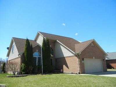 Chesterfield  Single Family Home For Sale: 28382 Gamble