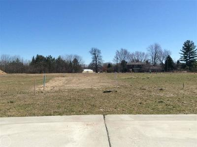 Shelby Twp Residential Lots & Land For Sale: 6690 Roseberry