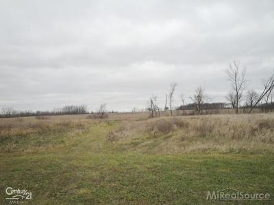 Lapeer Residential Lots & Land For Sale: 7607 Country Pride Lane