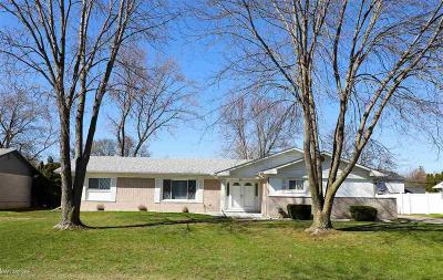 Clinton Township Single Family Home For Sale: 16247 Chatham Dr