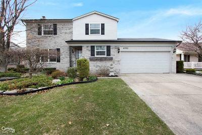 Chesterfield Twp Single Family Home For Sale: 47719 Valleybrook