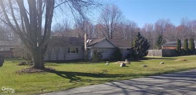 Algonac  Single Family Home For Sale: 9558 Lakepointe