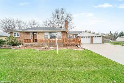 Saint Clair Shores Single Family Home For Sale: 22224 Violet