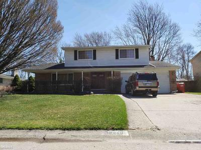 Clinton Township Single Family Home For Sale: 19340 Cheyenne
