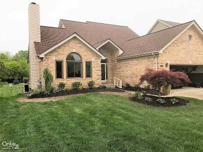 Clinton Township Single Family Home For Sale: 42268 Shulock