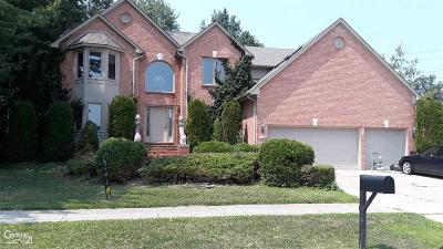 Macomb Single Family Home For Sale: 47885 Lavender
