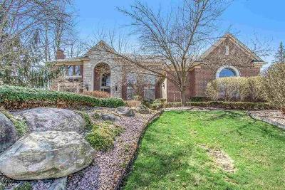 Troy Single Family Home For Sale: 5173 Serena Dr