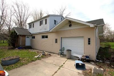 Clinton Township Single Family Home For Sale: 41595 Little