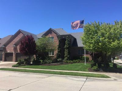 Clinton Township Single Family Home For Sale: 42943 Tecumseh Trail