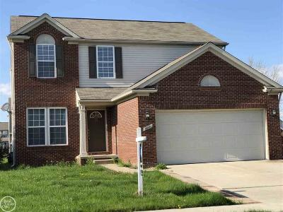 Macomb Twp Single Family Home For Sale: 18881 Livingston