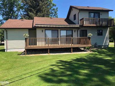 Harsens Island Single Family Home For Sale: 199 Monroe