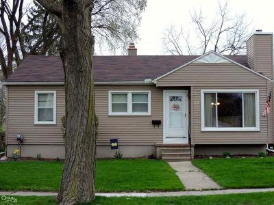 Mount Clemens Single Family Home For Sale: 1379 Hampton