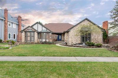 Shelby Twp Single Family Home For Sale: 51220 Forster Lane
