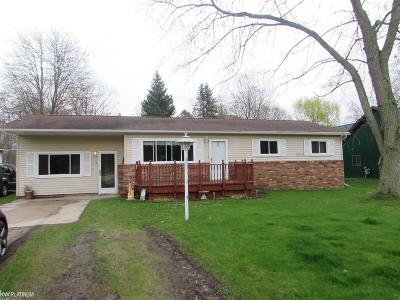 Port Huron Single Family Home For Sale: 2604 Alger Road