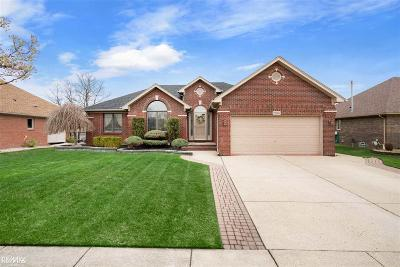 Macomb Single Family Home For Sale: 21359 Rome