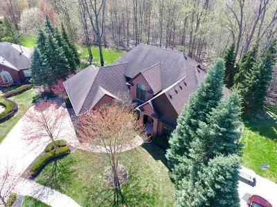 Shelby Twp Single Family Home For Sale: 11360 Wilshire