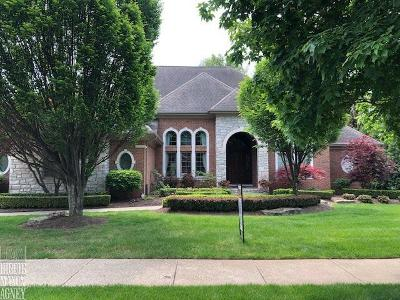 Rochester Single Family Home For Sale: 1468 Ramblewood Ct
