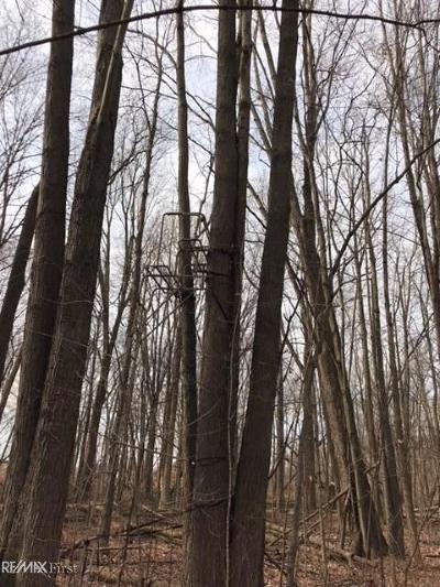Clay Twp Residential Lots & Land For Sale: Vacant Swartout