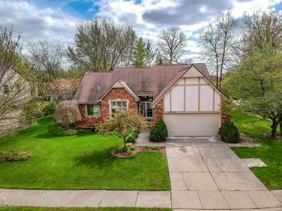 Clinton Township Single Family Home For Sale: 20330 Saint Laurence Dr