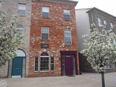 Shelby Twp Condo/Townhouse For Sale: 14055 Lakeside