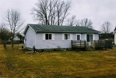 Saint Clair Single Family Home For Sale: 4193 Violet