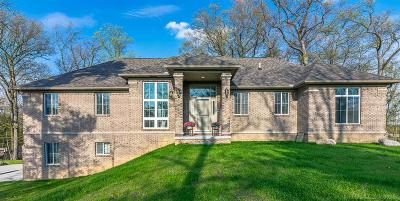 Romeo, Richmond Single Family Home For Sale: 72856 Campground