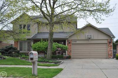 Clinton Township Single Family Home For Sale: 44095 Trent
