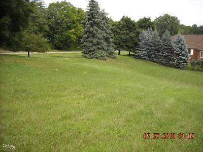 Macomb Residential Lots & Land For Sale: 5909 Lakeview Dr