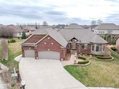 Clinton Township Single Family Home For Sale: 18442 Swan Ct