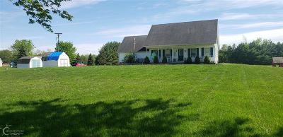 Saint Clair  Single Family Home For Sale: 5151 Fitzgerald