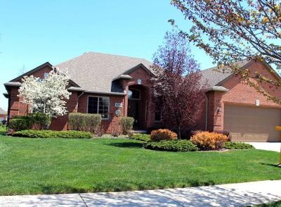 Clinton Township Single Family Home For Sale: 43704 Harlequin Ln.